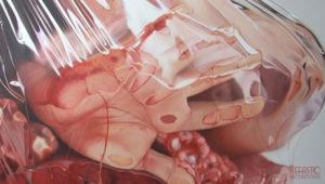 Fábio Magalhães – Pinturas ultra realistas