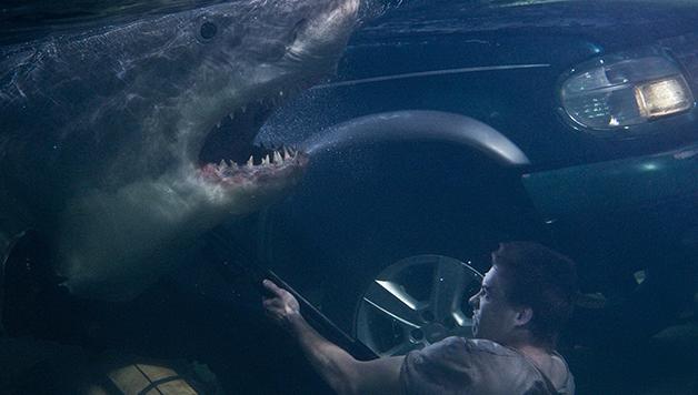 """8 filmes de tubarão que você precisa assistir antes de """"Megatubarão"""""""